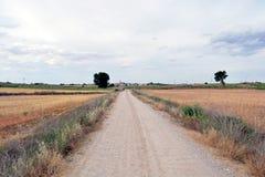 Ścieżka Zdjęcia Stock
