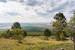 Ścieżka blisko łąka, poly, agricultue, drzewa i krzaki i, Lata niebieskie niebo i pogoda Obraz Stock
