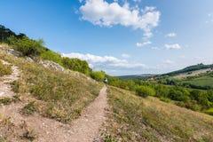 Ścieżka blisko łąka, poly, agricultue, drzewa i krzaki i, Lata niebieskie niebo i pogoda Fotografia Stock