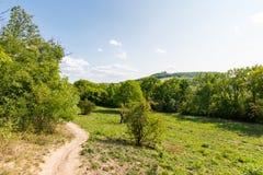Ścieżka blisko łąka, poly, agricultue, drzewa i krzaki i, Lata niebieskie niebo i pogoda Zdjęcie Royalty Free