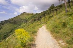 Ścieżka blisko Genova Zdjęcia Stock