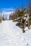 Ścieżka depcząca w śniegu Zdjęcia Stock