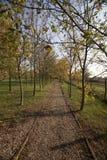 Ścieżka dla chodzić w contryside Zdjęcie Royalty Free
