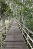 ścieżka drewniana Zdjęcie Royalty Free