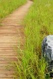 ścieżka drewniana zdjęcie stock