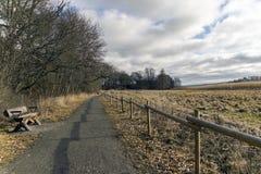 Ścieżka i ogrodzenie Zdjęcia Royalty Free