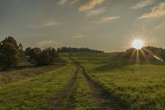 Ścieżka i pole w wieczór w Slavkovsky les parku narodowym Obrazy Royalty Free