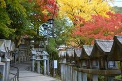 Ścieżka Japońska świątynia z Colourful drzewami obrazy royalty free