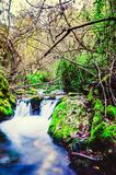 Ścieżka Majaceite rzeka między El Bosque i Benamahoma Obrazy Royalty Free