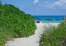 Ścieżka morze na parasol wykładającej Miami plaży obraz stock
