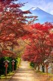 Ścieżka Mt Fuji w jesieni, Fujiyoshida, Japonia fotografia stock