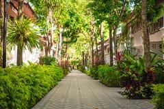 Ścieżka na miejscu w Tajlandia Obrazy Royalty Free