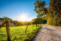 Ścieżka obok łąki z jaskrawym słońcem w tle zdjęcia royalty free