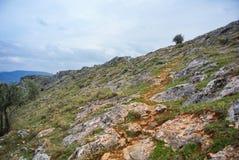 Ścieżka odgórny ot góra przy parkiem narodowym blisko Jaen, miasteczko przy Andalusia Zdjęcie Stock