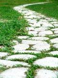 ścieżka ogrodowa Zdjęcie Stock