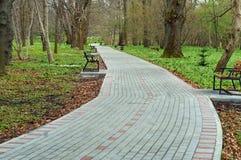 Ścieżka, park, trawa, spacer, piękny, gazon, krajobraz, droga Obrazy Stock
