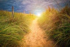 Ścieżka piasek plaża z beachgrass Sposób szeroki piaskowaty beache obraz royalty free