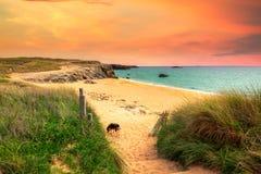 Ścieżka piasek plaża z beachgrass Sposób szeroki piaskowaty beache obraz stock