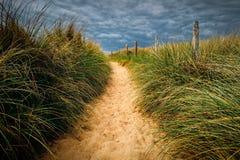 Ścieżka plaża, Quiberon krajobraz, Bretagne, Fr (Brittany) obrazy royalty free