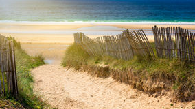 Ścieżka plaża, Quiberon krajobraz, Bretagne, Fr (Brittany) fotografia royalty free