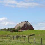 Ścieżka pokrywający strzechą dachu dom na małej wyspie Hallig Groede Fotografia Royalty Free