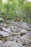 Ścieżka Preikestolen 013 Obraz Royalty Free