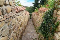 Ścieżka prowadzi St Nino wiosna w monasterze St Nino przy Bodbe Sighnaghi Gruzja zdjęcie royalty free