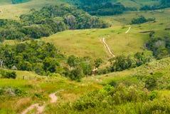 Ścieżka przez Granu Sabana, Wenezuela Obrazy Stock