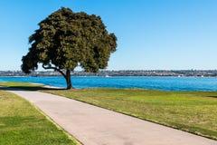 Ścieżka Przez narty plaży parka w San Diego obraz royalty free