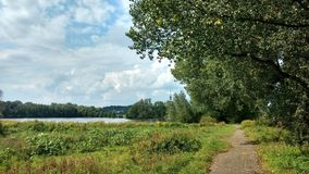 Ścieżka Przez natury Obraz Royalty Free