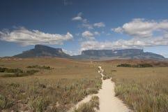 Ścieżka Roraima plateau zdjęcia stock