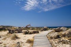 Ścieżka sposób na pięknej plaży w Grecja Obraz Royalty Free