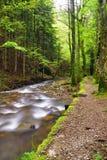 ścieżka strumień Zdjęcie Stock