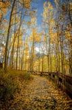 Ścieżka TARGET247_0_ Jack Rezerwuar (1) Zdjęcie Royalty Free