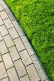 ścieżka trawy Fotografia Stock