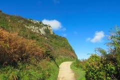 Ścieżka wśród zielonych wzgórzy i krzaków Zdjęcia Stock