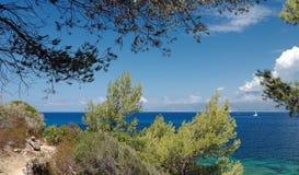 Ścieżka w Agriates wybrzeżu Fotografia Royalty Free