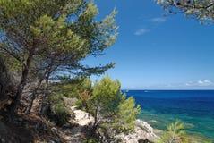 Ścieżka w Agriates wybrzeżu Zdjęcie Royalty Free