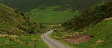 Ścieżka w Brecon bakanach Obraz Stock