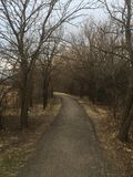 Ścieżka w drewnach przez drzewa znaleziska co szukasz ty Fotografia Royalty Free