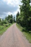 Ścieżka w drzewa Fotografia Royalty Free