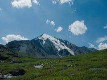 Ścieżka w górach Altai Fotografia Stock