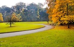 Ścieżka w jesień parku. Obrazy Stock