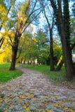 Ścieżka w jesieni Zdjęcie Royalty Free