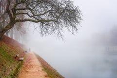 Ścieżka w jesieni mgle wzdłuż rzeki Obraz Stock