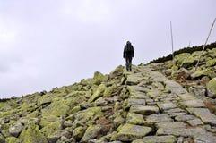 Ścieżka w Krkonose Zdjęcie Stock