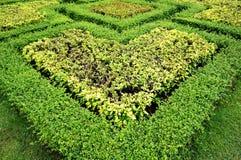 Ścieżka w ogródzie Blisko pałac zdjęcie royalty free