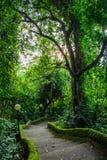 Ścieżka w parkowym Pura Goa Lawah, Bali, Indonezja Obrazy Stock
