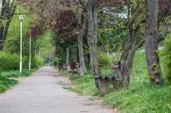 Ścieżka w parku i ławkach Zdjęcia Royalty Free