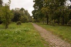Ścieżka w parku, wczesna jesień Zdjęcia Royalty Free
